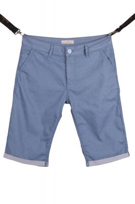 Мужские хлопковые шорты (Арт. SH 3578)