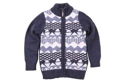 Детский свитер с застёжкой на молнии (Арт. D-POS 4146)