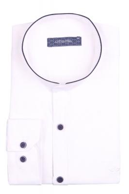 Стильная однотонная мужская рубашка с воротником стойка, длинный рукав (Арт. T 4117)