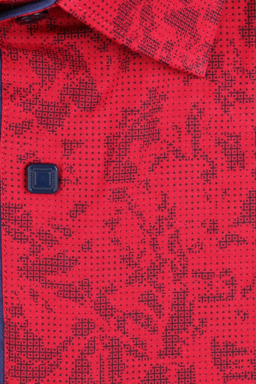 Рубашка мужская классика в рисунок, короткий рукав (Арт. T 4487К)